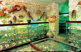 Melakološki muzej